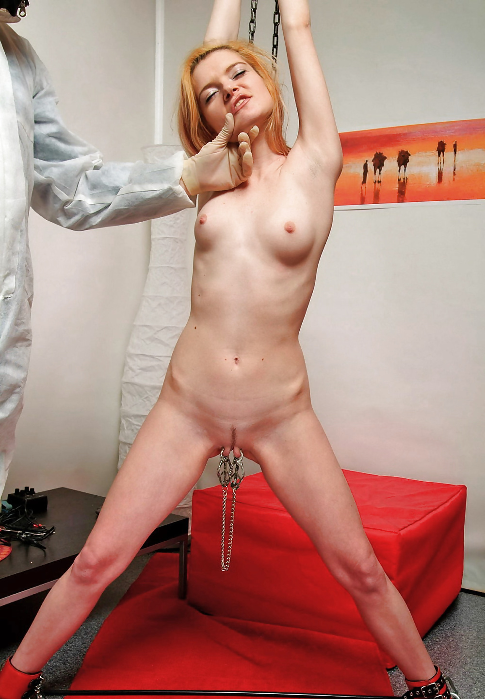 trainer-naked-painful-janine-nude-xxx