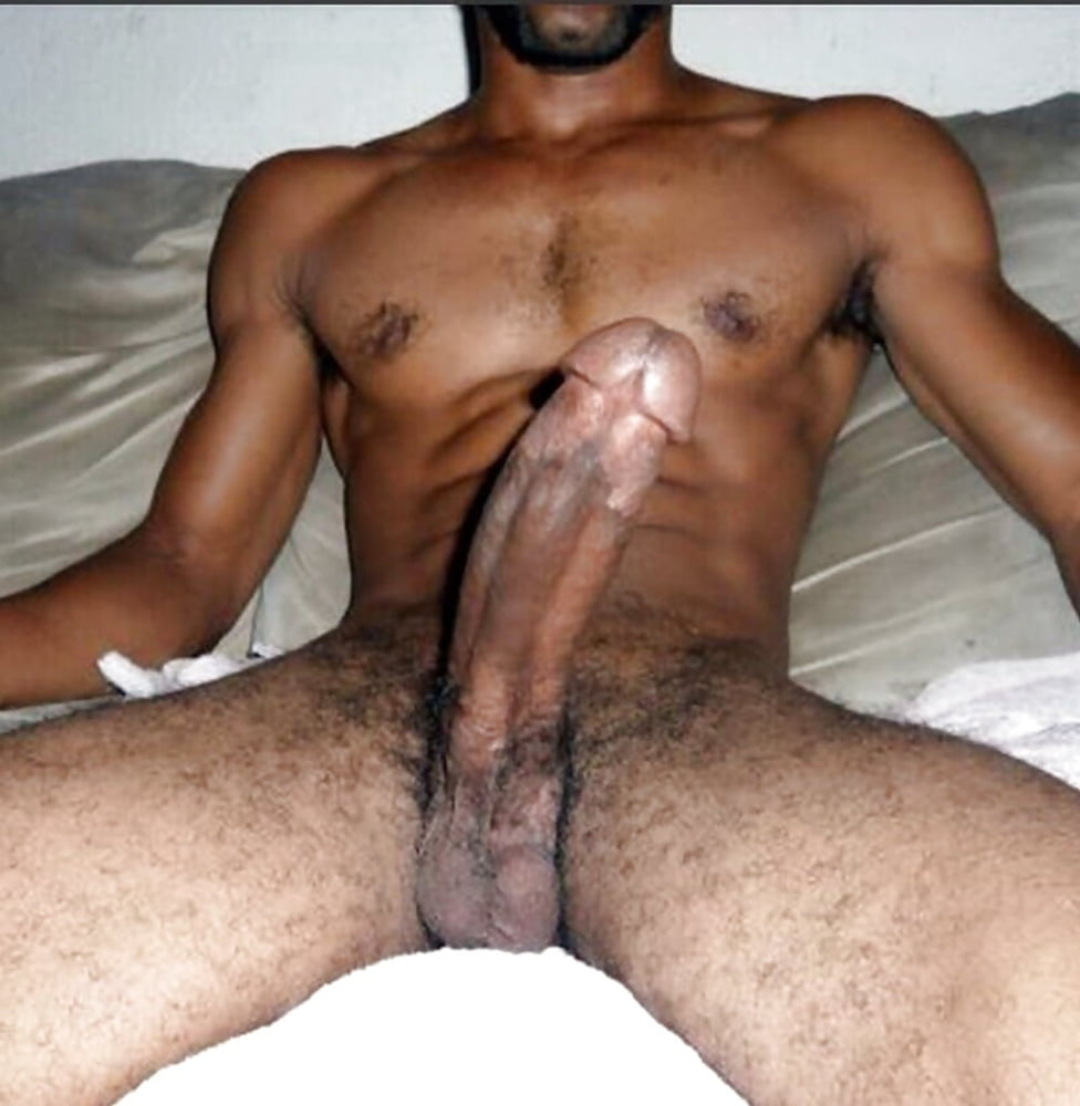 Arabian Dicks Big Arab Cock