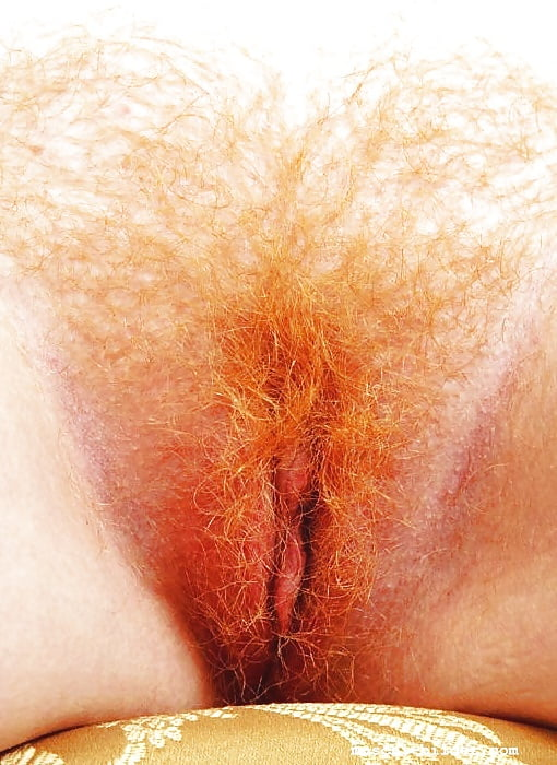 Free hairy, redhead pictures