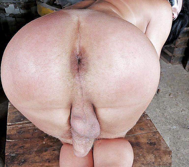 порно смотреть жирные жопы трансы