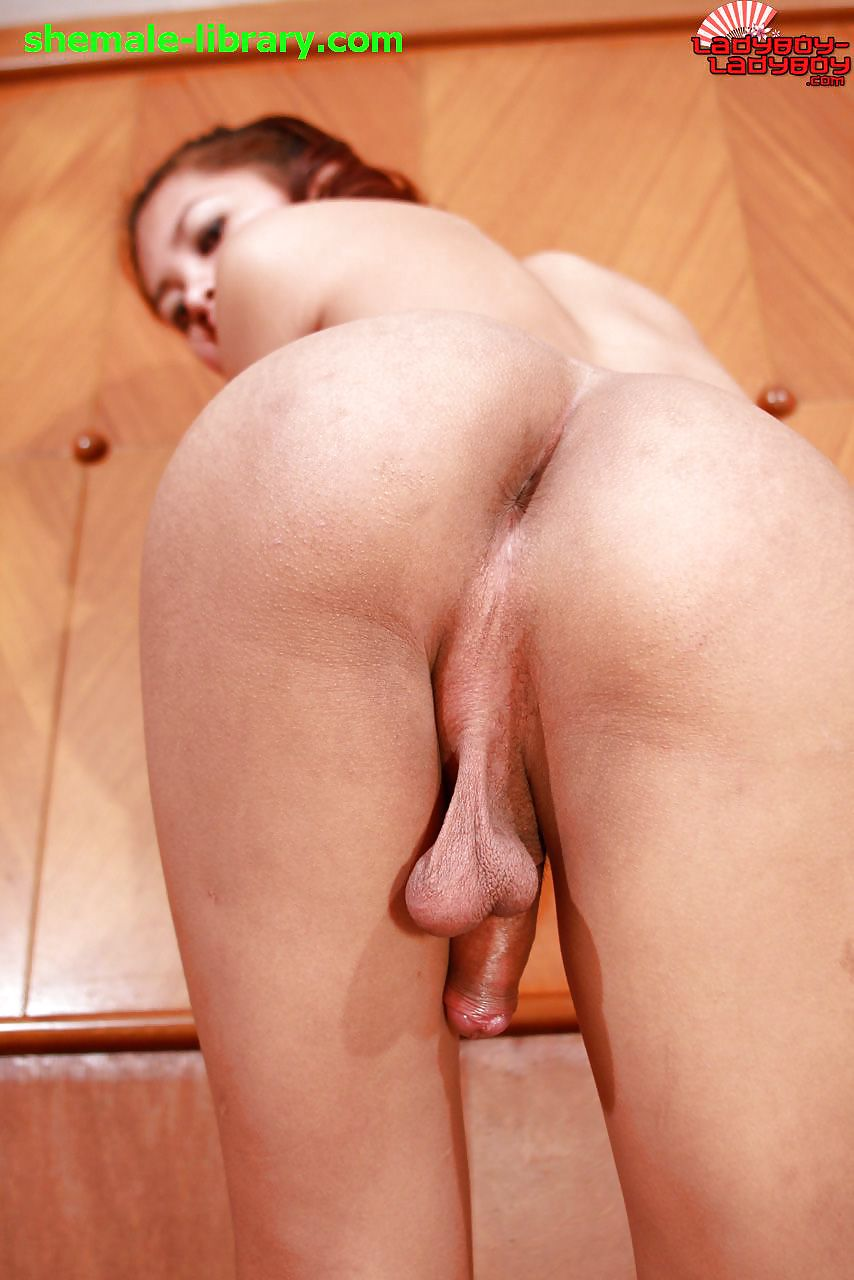 Ass sweet tranny