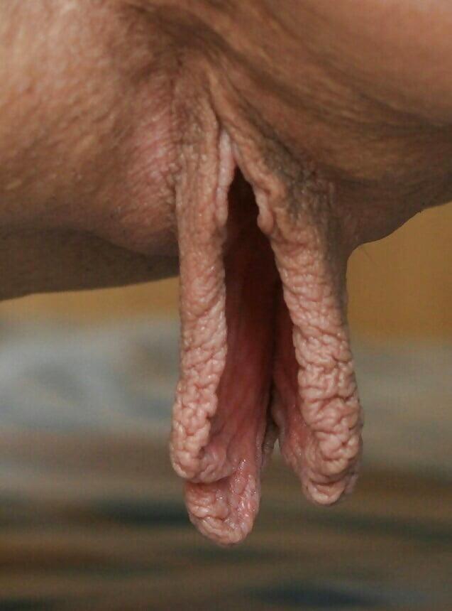NajwiÄ™ksza cipka w porno