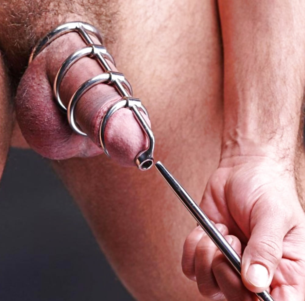 Zeus electrosex voltaic for him cock ball strap with beaded urethral insert