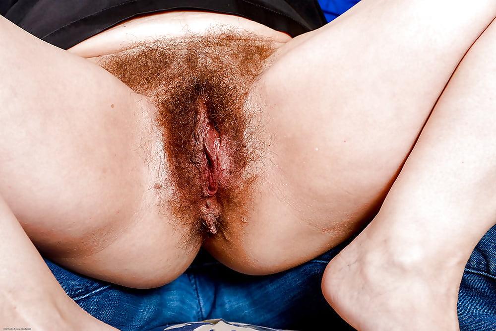 hairy-cunt-penetration-photos