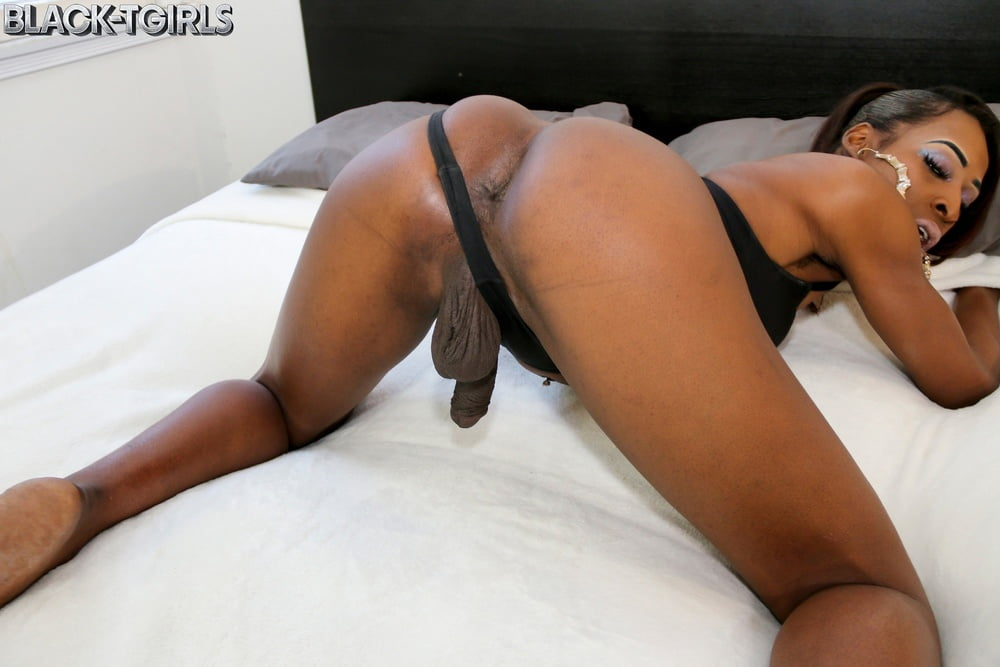 Black shemale shows the ass - Só Travestis