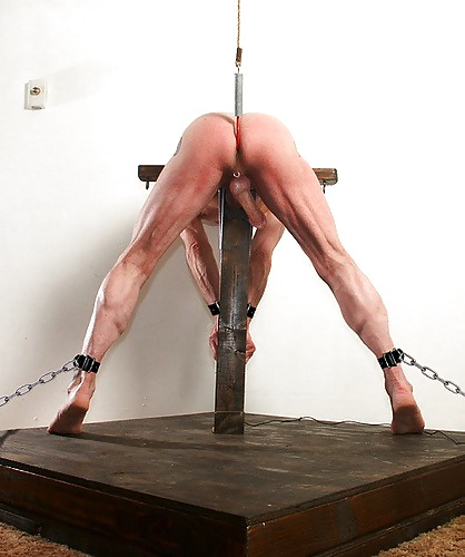 Suspended by cock torture