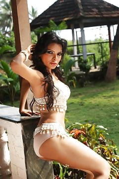 sherlyn chopra animated toon babe