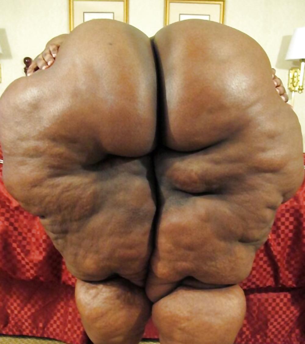 Самые большие и жирные жопы #3