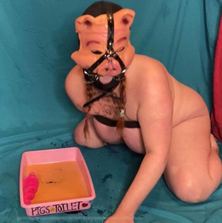 Pathetic Porn Pig Pics - 26 Pics