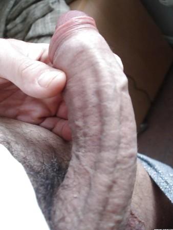 Pictures of pornstar karlie simon
