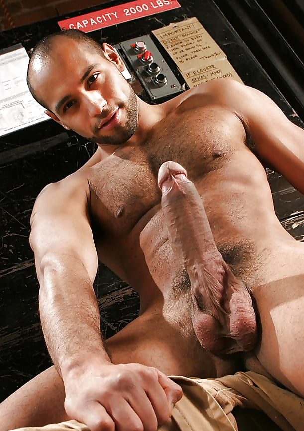 Free gay big cock gallery