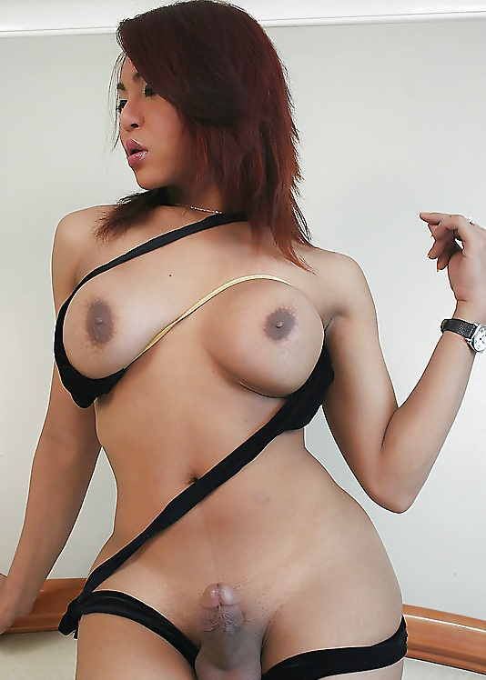 Asian shemale blogs