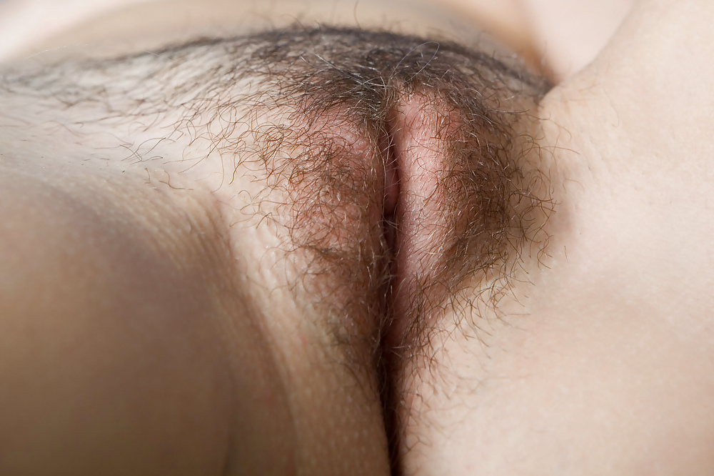 Hairy pussy close up pictures