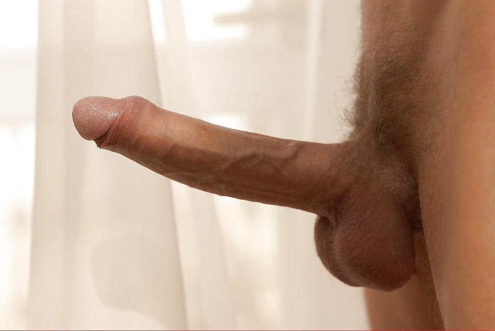 erect-cock-best-crossdresser-porn