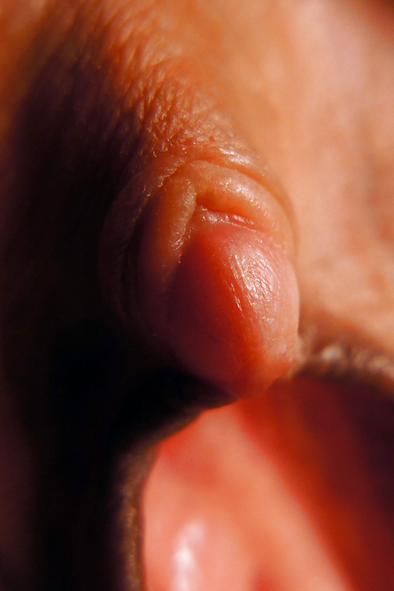 clitoris Piictures of